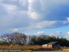里山 冬の空 P1190317zz