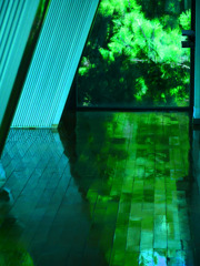 緑陰のフロアー P1470195zz