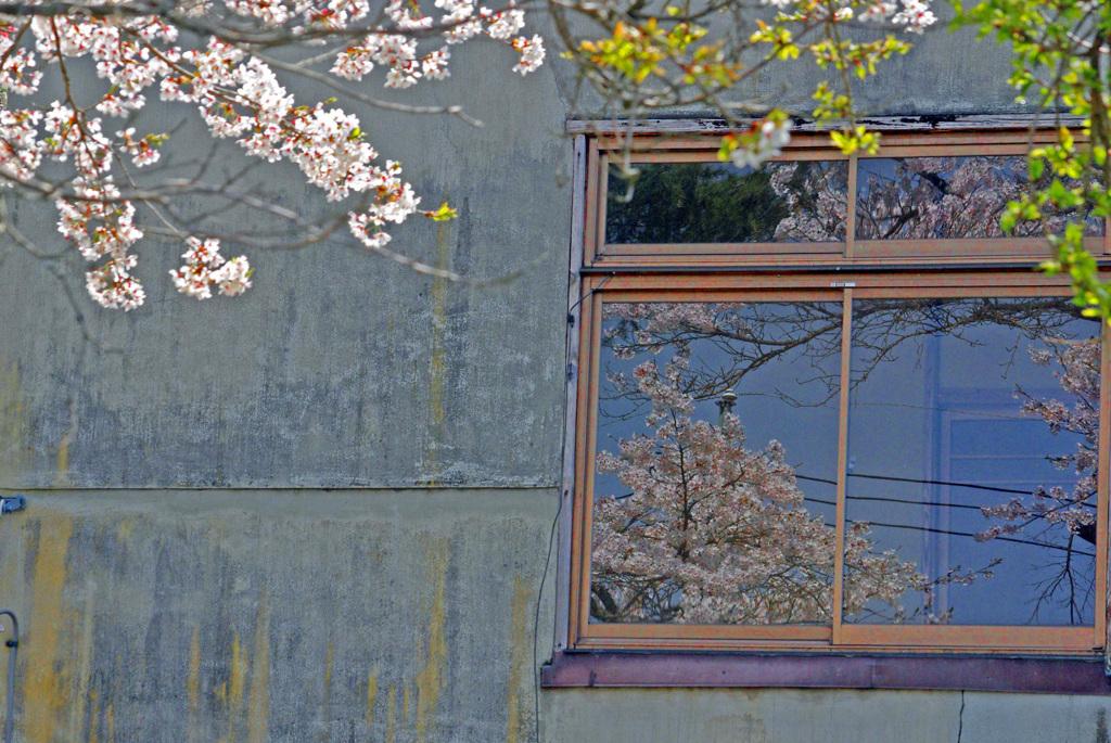 窓の中の外の景色 IMGP1521zz