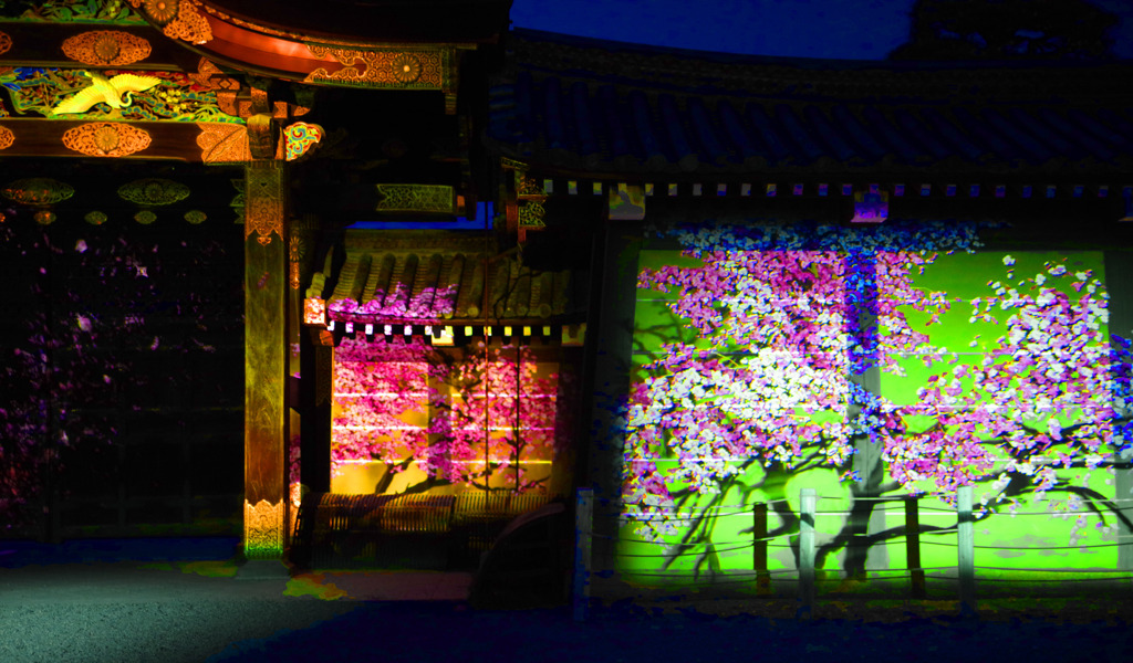 projection mapping in 二条城    IMGP9816zz