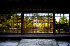 庭園もまた一幅の絵画 IMGP8503zz