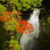 雨後の高野大滝 _IGP9350xx
