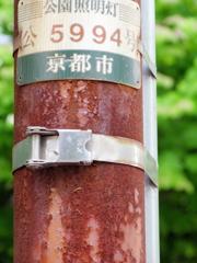 神宮道の電柱がさびている