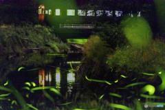 樽見鉄道ホタル号