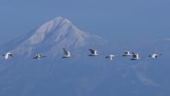 磐梯山を飛ぶ