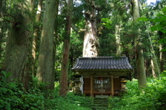 再建の神社