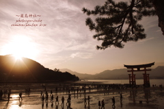 The World Heritage Miyajima