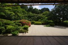 皐月の庭園