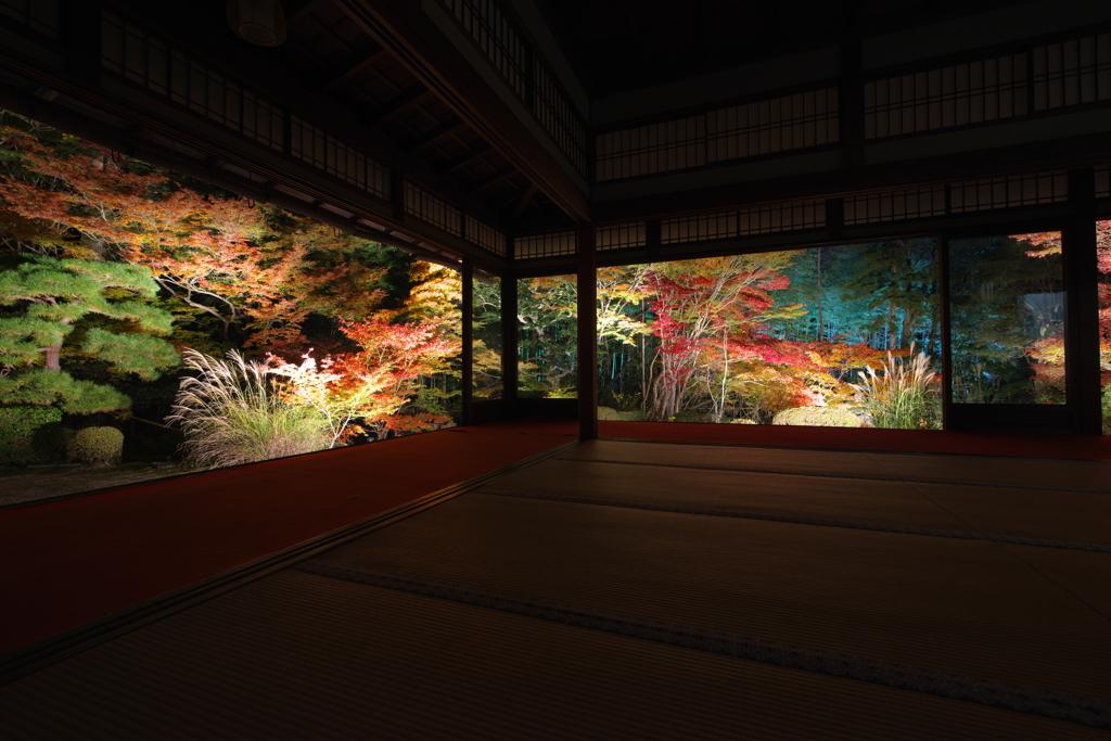 京の愉しみ