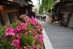 京の旅 Ⅳ