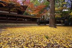 秋のフィナーレ