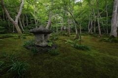 京の旅 Ⅵ