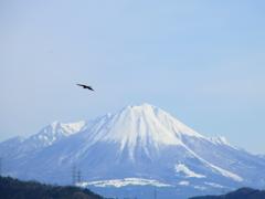 大山冠雪。