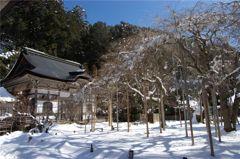 常照皇寺・冬