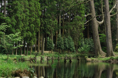 納池公園2