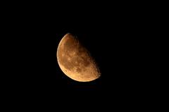 月がとっても綺麗だから・・・