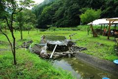 天然水プール