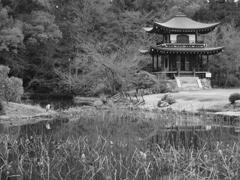 古都の庭Ⅱ