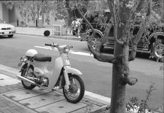 OM-1 + ZUIKO 50mm F1.8  / T-MAX100