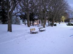 雪の西公園