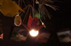 東山植物園:Origami