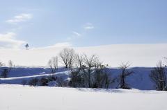 美瑛の冬ー2009