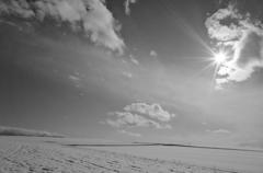 陽光-2013初冬