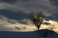 冬陽  《G5 X版》