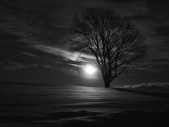 月を抱いて・・・《Monochrome》  2014美瑛