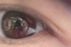 瞳の中の私