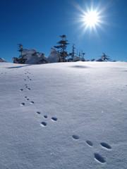 冬の北横岳にて(Scene12/40)