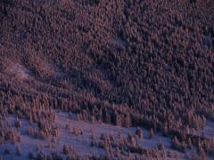 冬の北横岳にて(Scene39/40)