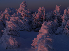 冬の北横岳にて(Scene36/40)