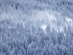 冬の北横岳にて(Scene27/40)