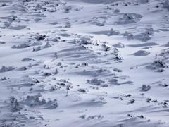 冬の北横岳にて(Scene26/40)