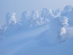 冬の北横岳にて(Scene19/40)