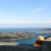 Pooh on the Signal Hill