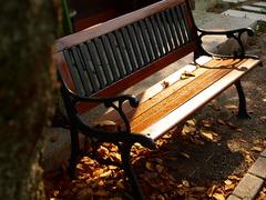 晩夏のベンチ
