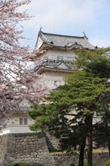 桜の天守閣