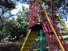 朝の公園1