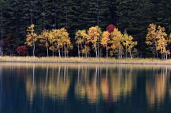 深まる秋 ~オンネトー~