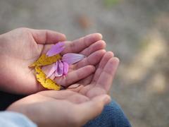 秋空の下で・・