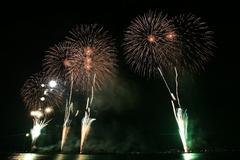 諏訪湖花火大会2008(16)