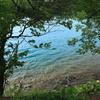 湖畔の色合い