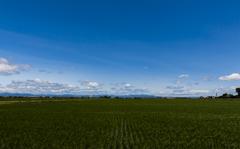 2色の景色