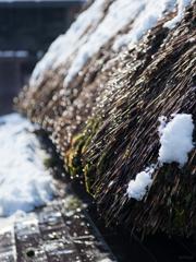 雪解けキラリ