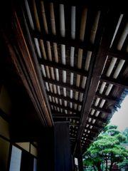 木の皮と竹の屋根