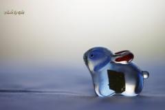 青いガラスの兎