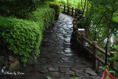 雨上がり公園の石畳 帰り