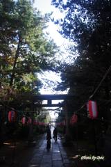 春日部八幡神社参道